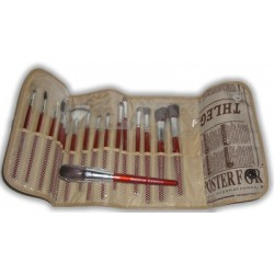 17 brushes case