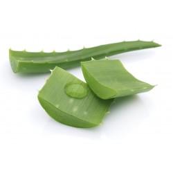 Aloe Vera gel 99% 500 ml (natural)