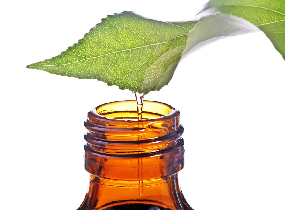 ¿Sabes todo lo que los aceites esenciales nos aportan? ¡Descúbrelo!